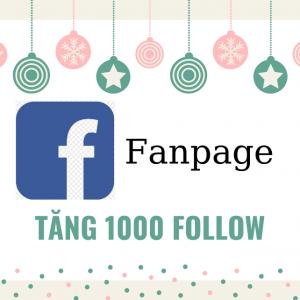 Tăng 1000 follow fanpage